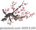 홍매화 - 수묵 채색 - 꽃 다수 36953194