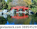 Japanese Friendship Garden in Kelley Park 36954529
