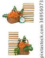 berries rowan, stack of books and alarm clock 36956073