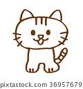 고양이 36957679