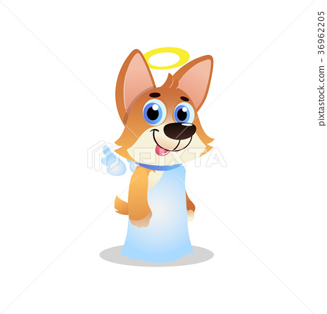 Cute corgi in white angel costume with wings and 36962205