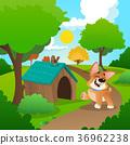 景色 风景 景观 36962238