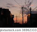 Telephone pole in evening 36962333
