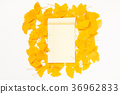 Blank paper on ginkgo leaves background 36962833