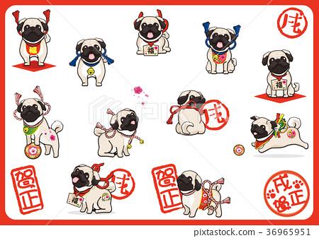 pug, dog, dogs 36965951