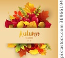 Autumn leaves frame background 36966194