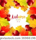 Autumn leaves frame background 36966196