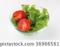 토마토와 사라다와사비나 샐러드 36966561