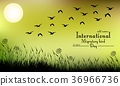 Field of grass and flying birds on night backgroun 36966736