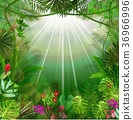 Tropical background beautiful 36966996