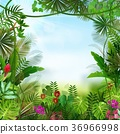 Tropical background beautiful 36966998