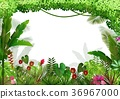 Tropical background beautiful 36967000