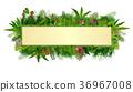 Tropical plants background. rectangle floral frame 36967008