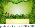 Tropical background with rectangle floral frame in 36967009