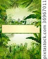Tropical background with rectangle floral frame in 36967011