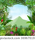 Tropical background beautiful 36967019
