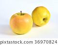 사과 (고등학교) 36970824
