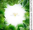 Bright tropical background with jungle plants. 36971475