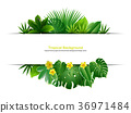 background vector leaves 36971484