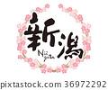新潟刷字符櫻花框架 36972292