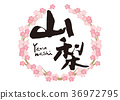 calligraphy writing, cherry blossom, flowers 36972795