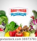 Vegetable background 36973781