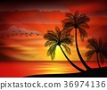 Silhouette of bird with sunset 36974136