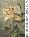 油畫 玫瑰花 玫瑰 36975075