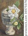 Summer camellia 36975076