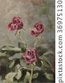 Three roses 36975130