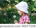 Little girl in a hat blowing a dandelion 36977206