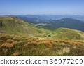 Mountain lake Ivor at the foot of the Bliznitsa 36977209