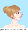 woman with perfect face proportions 36978455