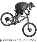 An image of a cyclist on a mountain bike  36981557
