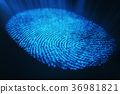 fingerprint, 3d, rendering 36981821
