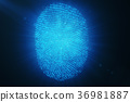 fingerprint, 3d, rendering 36981887