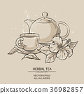 teapot with cup and hibiscus flower 36982857