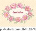 peonies frame on color background 36983028