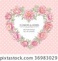 floral, vector, wedding 36983029