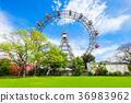 비엔나, 빈, 오스트리아 36983962