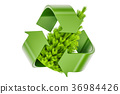 Recycle symbol with Christmas Tree 36984426