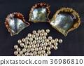 不匹配的珍珠和珍珠貝殼 36986810