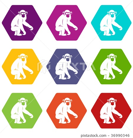 Macaque icon set color hexahedron 36990346