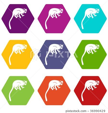 Marmoset monkey icon set color hexahedron 36990429