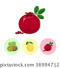 Fruit Icons, Pomegranate ,Lemon , Kiwifruit 36994712