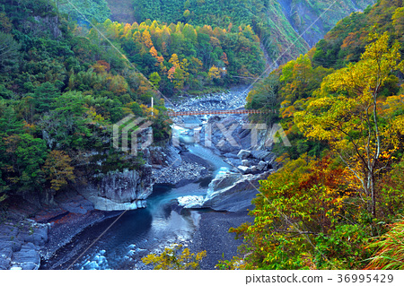 溪谷,水,山,秋季,秋天,溪流,树,枫叶,枫树,溪流,桥,台湾,新竹,秀峦 36995429
