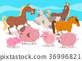 farm animal cartoon 36996821