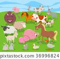 farm, animal, cartoon 36996824