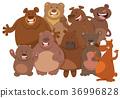 cartoon wild bears animal characters group 36996828