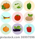 Round Colored Icons Fresh Vegetables 36997096